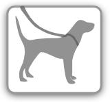 wie wirkt rattengift bei hunden