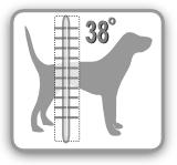körpertemperatur hund unter normal