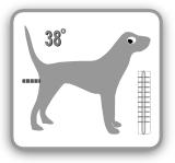 normal temperatur hund
